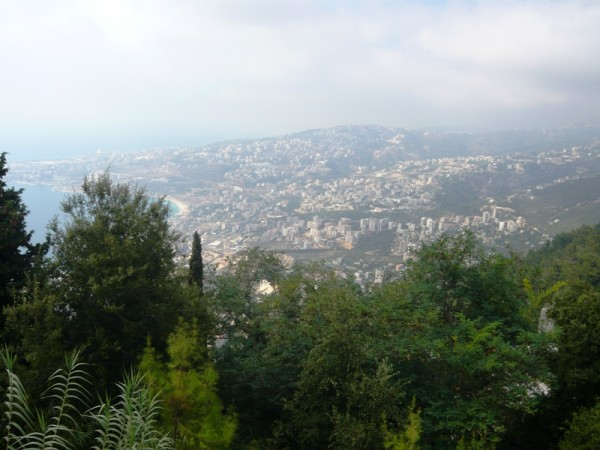 Change in Lebanon's weather could spell disaster to country's natural resources of forests and water.